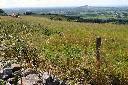 T2013-Somerset Levels