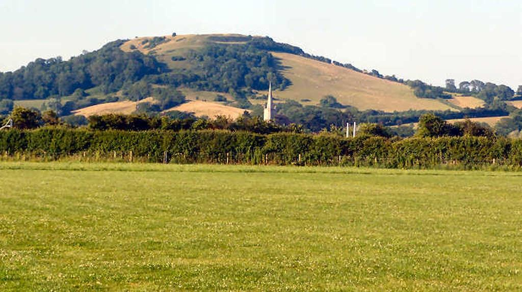 T2013-Brent Knoll